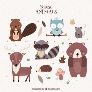 Cute hand-drawn forest animals Free Vector