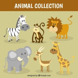 Nice wild animal collection Free Vector